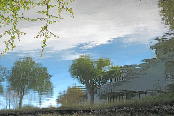 A beautiful home, reflected in the surface of a pond