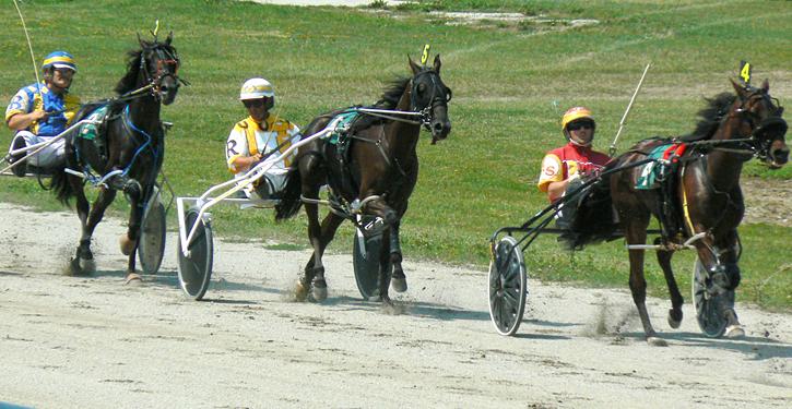 Harness Racing, Bowling Green, Ohio | http://bit.ly/2dNzm9Q